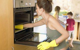 Как почистить электрическую духовку в домашних условиях