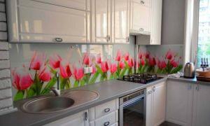 Кухонный фартук из �текла: фото в интерьере, плю�ы и мину�ы, правила ухода