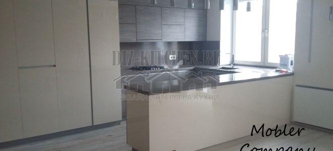 Кухня в студии 26 кв. м с глухими фасадами и барной стойкой