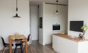 Дизайн кухни-го�тиной в однокомнатной квартире
