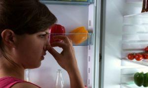 Чем помыть и как уничтожить неприятный запах из холодильника в домашних условиях?