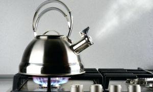 Как почистить чайник из нержавейки снаружи: лучшие способы, народные методы