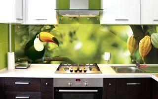 Скинали для кухни: фото, разновидности, советы дизайнеров