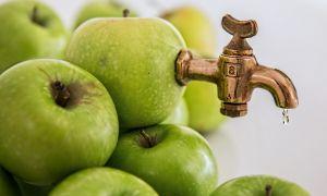 Шнековая соковыжималка для яблок большой производительности: как выбрать, рейтинг моделей