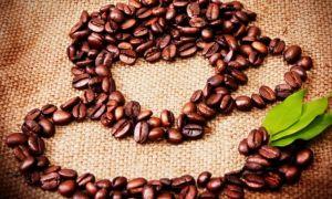 Панно, топиарий, картины из кофейных зерен своими руками