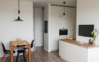 Дизайн кухни-гостиной в скандинавском стиле в однокомнатной квартире 45 кв.м