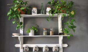Декоративные навесные полки для кухни: правила выбора, делаем своими руками