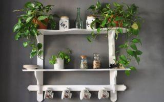 Декоративные навесные полки для кухни