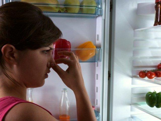 Как убрать неприятный запах из холодильника быстро чем помыть чтобы устранить причину
