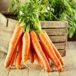 Как хранить морковь в домашних условиях: обзор лучших способов, рекомендации хозяек