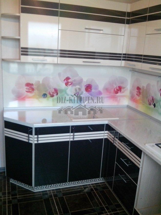 Черно-белая кухня с панелями Albico