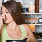 Как избавиться от запаха в холодильнике после тухлого мяса?