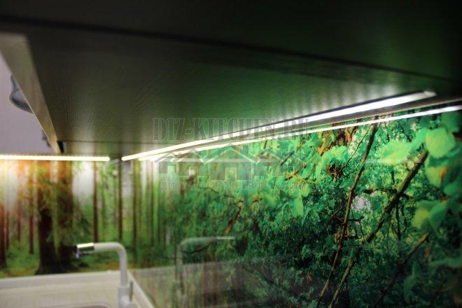 Стеклянный фартук зеленый лес